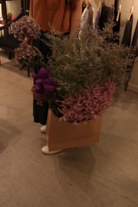 美しい色の花々